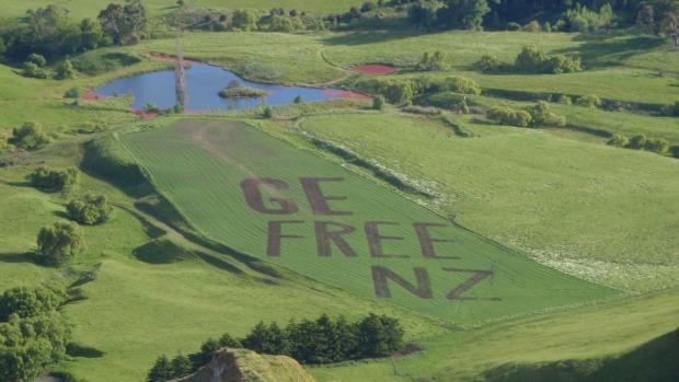 Ge Free nz