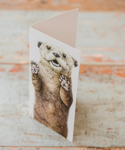 Wild Grey Fox Otter Card